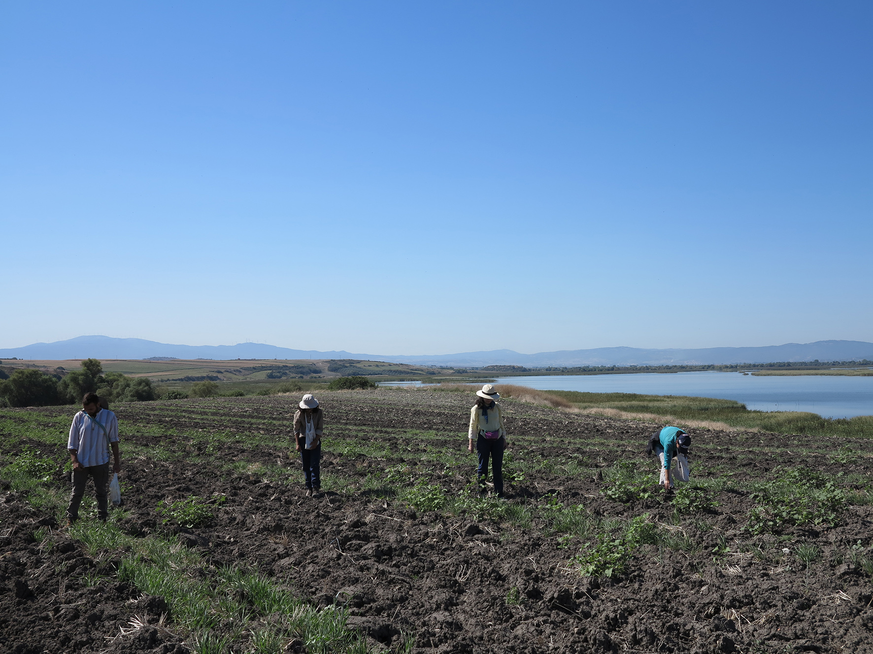 Manyas Gölü'nün hemen doğusunda yer alan Musluçeşme yerleşiminde 2017 ve 2018 yıllarında yoğun ve sistematik yüzey taramaları yapıldı.